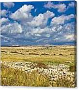 Summer Landscape Of Pag Island Canvas Print