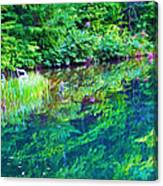 Summer Monet Reflections Canvas Print