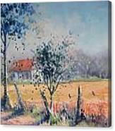 Summer Morning Canvas Print