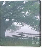 Summer Morning Fog Canvas Print