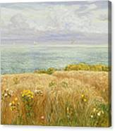 Summer On The Cliffs Canvas Print