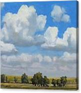 Summer Pasture Canvas Print