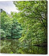 Summer Pool Cannock Chase Canvas Print