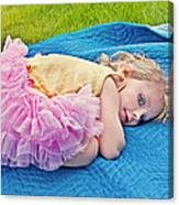 Summer Rest With Blueberries Canvas Print