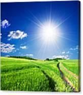 Summer Rural Landcape Canvas Print