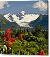 Summer Scenic Of Grewingk Glacier And Canvas Print