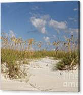 Summer Sea Oats Canvas Print