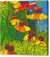 Summer Sketch Canvas Print