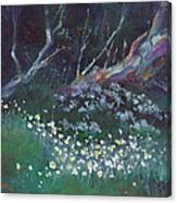 Summer Snowflakes Canvas Print