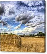 Summer Straw Bales Canvas Print