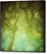 Summer Thunder Canvas Print