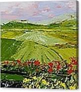 Summer Valley Canvas Print