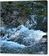 Summer Waters Canvas Print