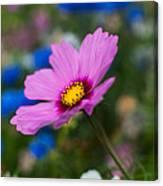 Summer Wild Blooms Canvas Print