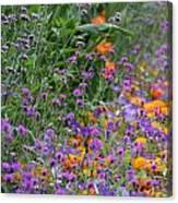 Summer's Colors Canvas Print