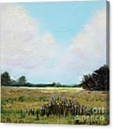 Summer's End Canvas Print