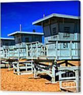 Summers Sentinels 2 Canvas Print