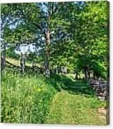 Summertime At The Farm Canvas Print