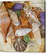 Summertime Relics Canvas Print