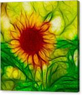 Sun And A Flower Canvas Print