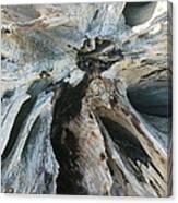 Sun-bleached Canvas Print