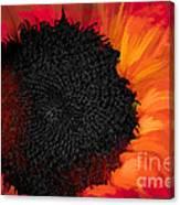 Sun Fire Canvas Print