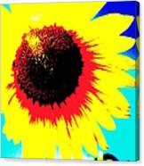 Sun Flowers Canvas Print