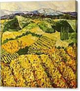 Sun Harvest Canvas Print