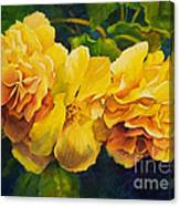 Sun Kissed Yellow Begonias Canvas Print