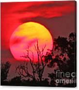 Louisiana Sunset On Fire Canvas Print