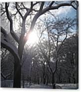 Sun Over The Park Canvas Print