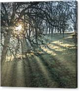 Sun Rays  On A Hillside Canvas Print