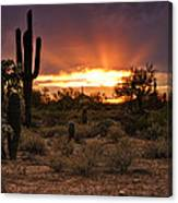 Sun Rays Over The Sonoran Desert  Canvas Print
