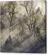 Sun Rays Through The Morning Mist Canvas Print