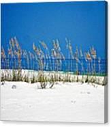 Sun Sand Surf Canvas Print