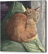 Sun Seeker I Canvas Print