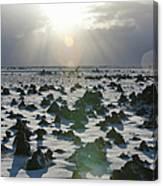 Sun Shining On A Field Of Lava Rocks Canvas Print