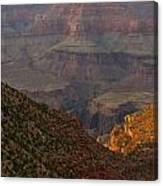 Sun Shining On The Canyons Canvas Print