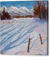 Sun Snow And Shadows Canvas Print
