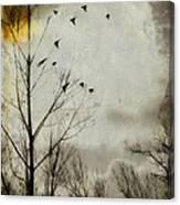 The Sun Splashed Unto A Gray Day Canvas Print