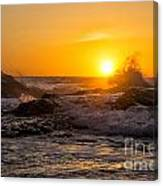 Sun Splash Canvas Print