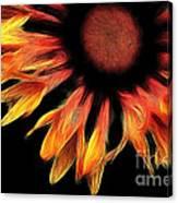 Sun Worshipper Canvas Print