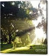 Sunbeam Landscape Canvas Print