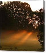 Sunbeams And Fog Canvas Print