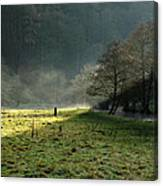 Sunbeams And Mist - Wolfscote Dale Canvas Print