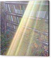 Sunbeams Over Gate Canvas Print