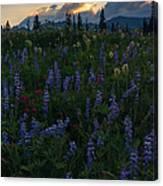 Sunbeams Over Rainier Canvas Print