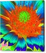 Sunburst - Photopower 2244 Canvas Print