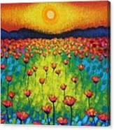 Sunburst Poppies Canvas Print