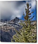 Sundance Aspen-utah V2 Canvas Print